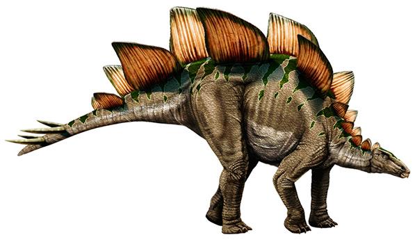 Dinosaurios del Jurásico: Estegosaurio (reconstrucción artística en vida)
