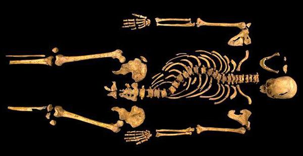 Ricardo III: esqueleto